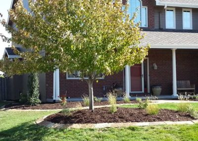 landscaping-mulched-treebeds-residential
